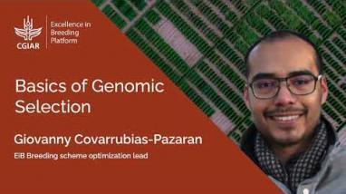 Embedded thumbnail for Basics of Genomic Selection 2. Basics of Genomic Selection