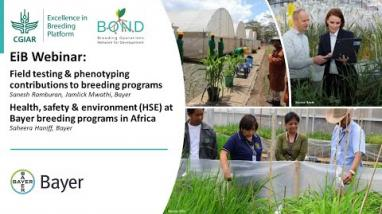 Embedded thumbnail for Bayer's field testing & phenotyping / HSE in Africa